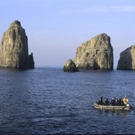 Isla de Malpelo Buenaventura Valle